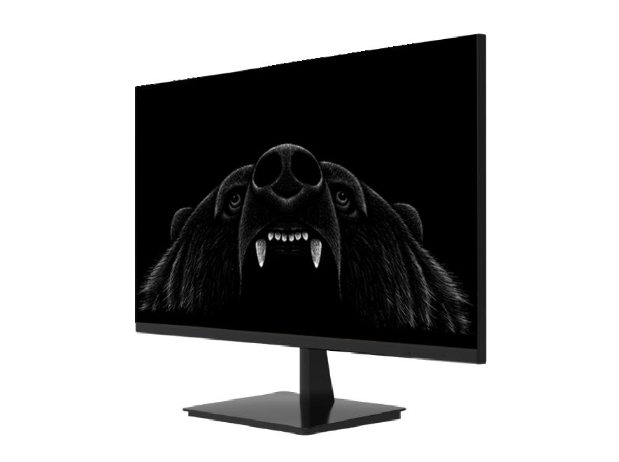 monitor24-07-2